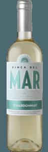 vino blanco valencia chardonnay